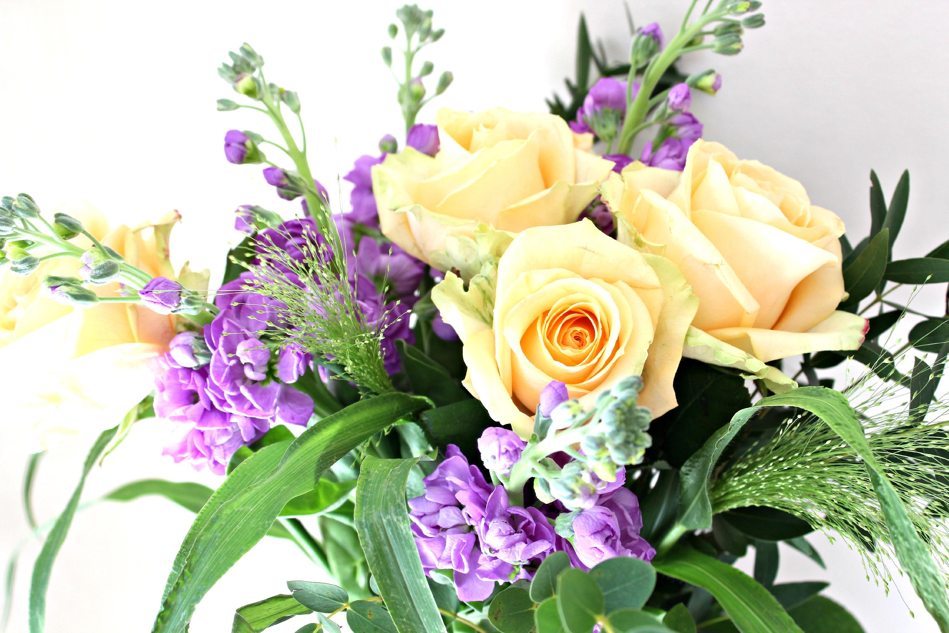 3 - Debenhams Flowers